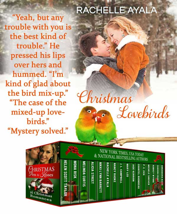 06-ChristmasLovebirds-teaser-boxed-set