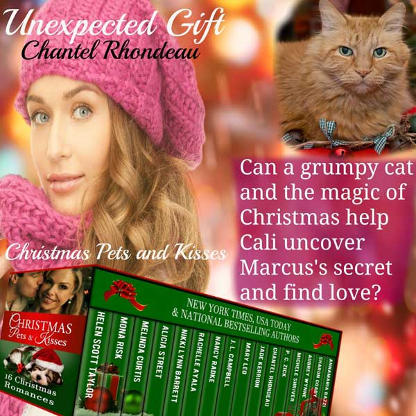 11-Unexpected-Gift-teaser